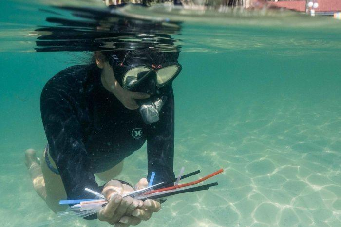 Plastic pollution the last straw for underwater clean-up volunteers at Manly Cove